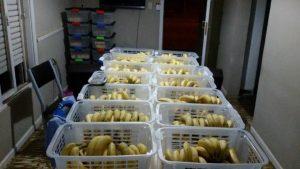 Alimentación saludable en las escuelas