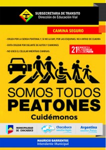 Día de la Seguridad Vial del Peatón.