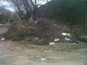 Ramas y basura acumulada en calle Olavarría y Cadelago.