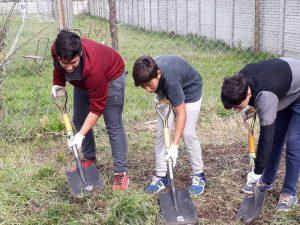 Alumnos trabajando en la huerta