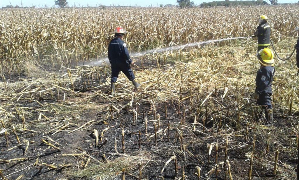 Bomberos de Rawson sofocando el indcendio de rastrojo de maíz