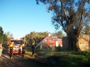Los Bomberos sofocando el fuego del árbol.