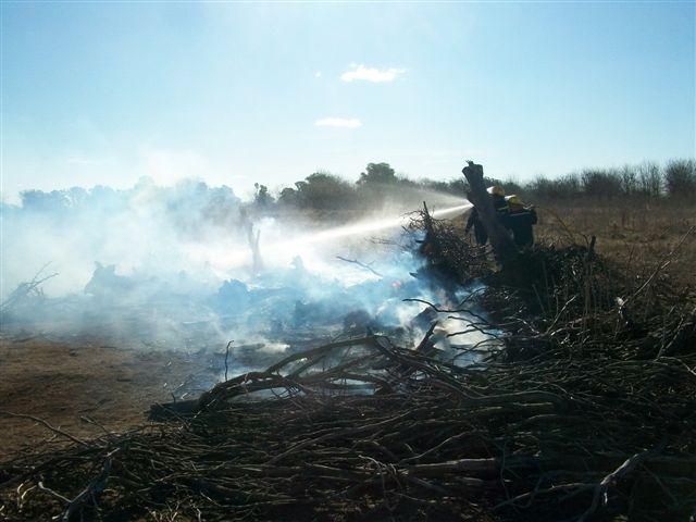 Otra imagen del incendio en la quinta municipal.
