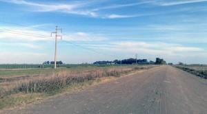 Proyecto para asfaltar la 42, entre Chacabuco y Bragado.