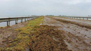 Trabajos de reparación de la Ruta 7 por desborde de laguna La Picasa