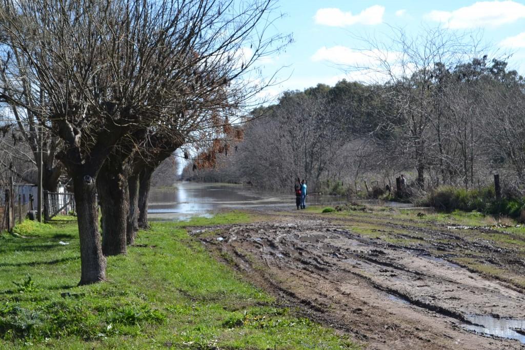 Camino que conduce a establecimientos rural familia Rossi.