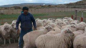 Atilio Lepiante trabaja en un campo a 80 kilómetros de Maquinchao. Foto: Gentileza Noticiasveintitres
