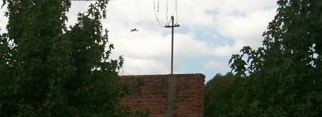 El avión fumigador sobrevolando Rawson a las 10.45 horas de este martes.