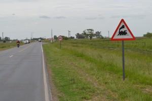 Imagen de los carteles indicadores colocados en el paso a nivel de Rutas Provinciales 51 y 42, Rawson.