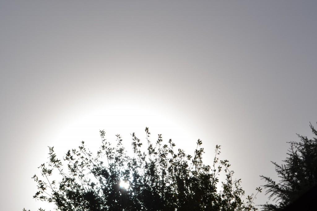 4/5/15- Por efecto del vientos que llega del oeste, a 20 kilómetros por hora, desde el mediodía, las cenizas del volcán chileno Calbuco cubren el cielo de la localidad de Rawson, ocasionando que a las 14.30 horas,  la visibilidad sólo sea de dos kilómetros, según informa el Servicio Meteorológico Nacional.