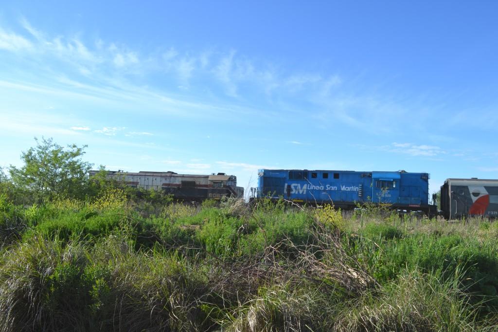El tren continúo con su recorrido a las 8 horas, una hora después de ocurrido el accidente.
