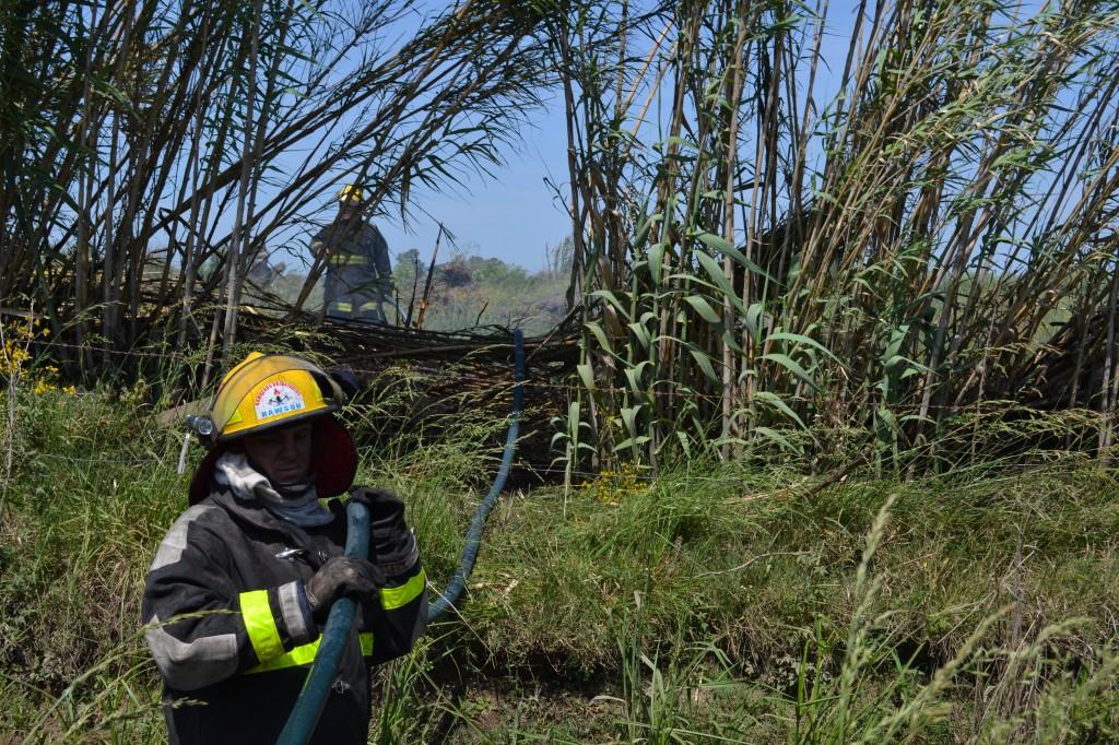 Bombero en el simulacro de incendio de malezas.