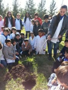 Programa de Forestación Participativa.