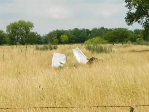 Algunas chapas del galpón volaron por acción del viento.
