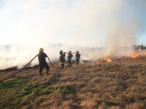Incendio de pastizales en campo sobre RP42.