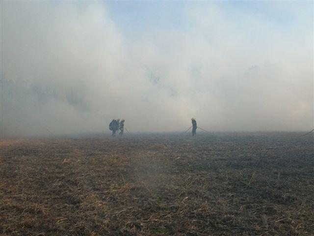 Otra fotografía del incendio de rastrojos.