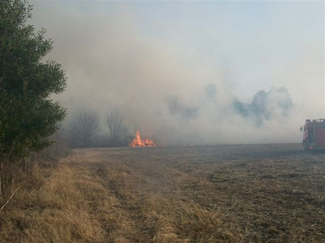 Imagen del incendio de rastrojos.
