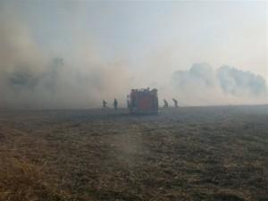 Personal de Bomberos Voluntarios trabajando para extinguir el incendio de rastrojos.