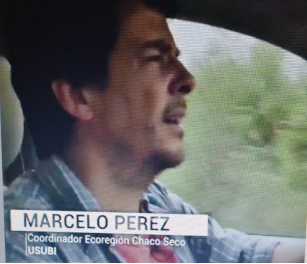 Licenciado en Recursos Naturales Renovables, Marcelo Pérez