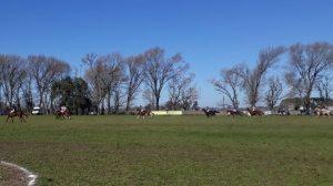 El Relincho-La Marciala campeón en Chivilcoy