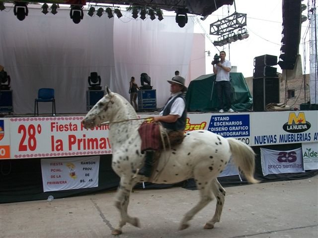 El Delegado Municipal Gustavo Millán en el desfile criollo.