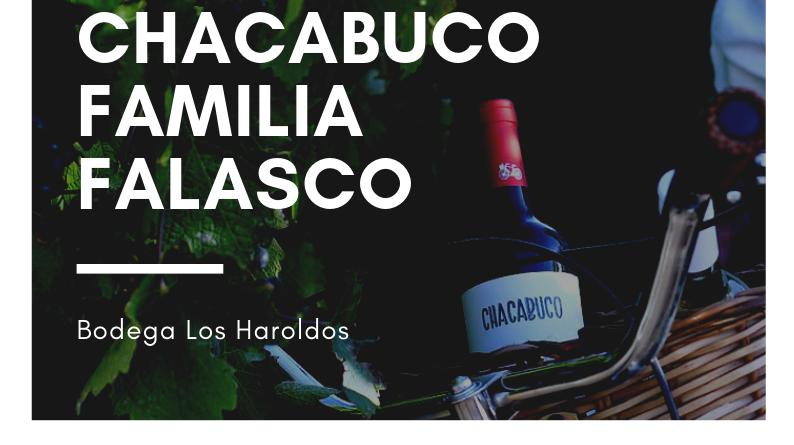 Concejales del PJ-FpV proponen un reconocimiento al vino Chacabuco.