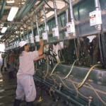 Productores de leche se movilixzarán en Rafaela.