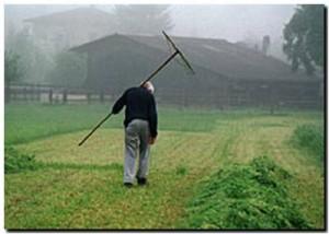 Hoy es el día del trabajador rural.