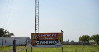 Centro de Tránsito Canino