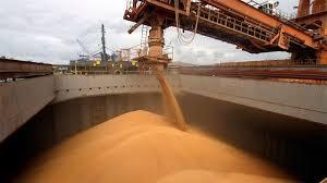 Récord de exportaciones de maíz: Casi 25 millones de toneladas entre enero y agosto