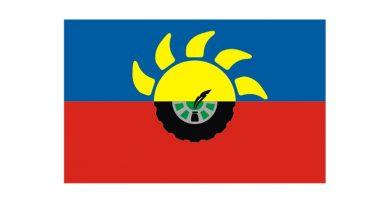 Bandera del Partido de Chacabuco