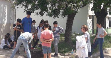 Alumnos cabando para plantar uno de los árboles