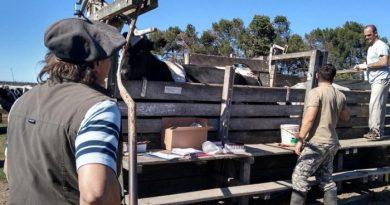 Controles en el proceso de recertificación de establecimientos libres de tuberculosis